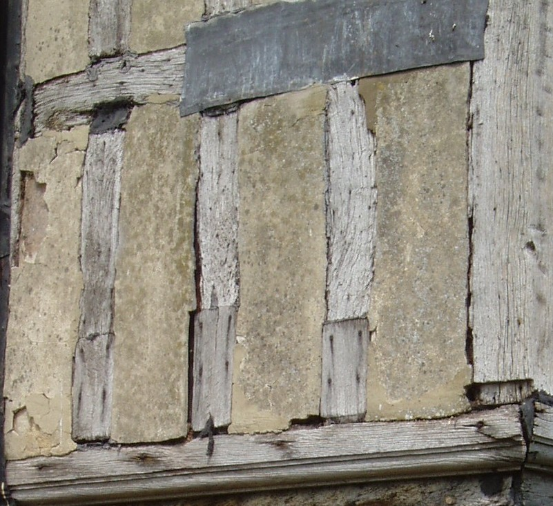 Conservation - Timber frame defects